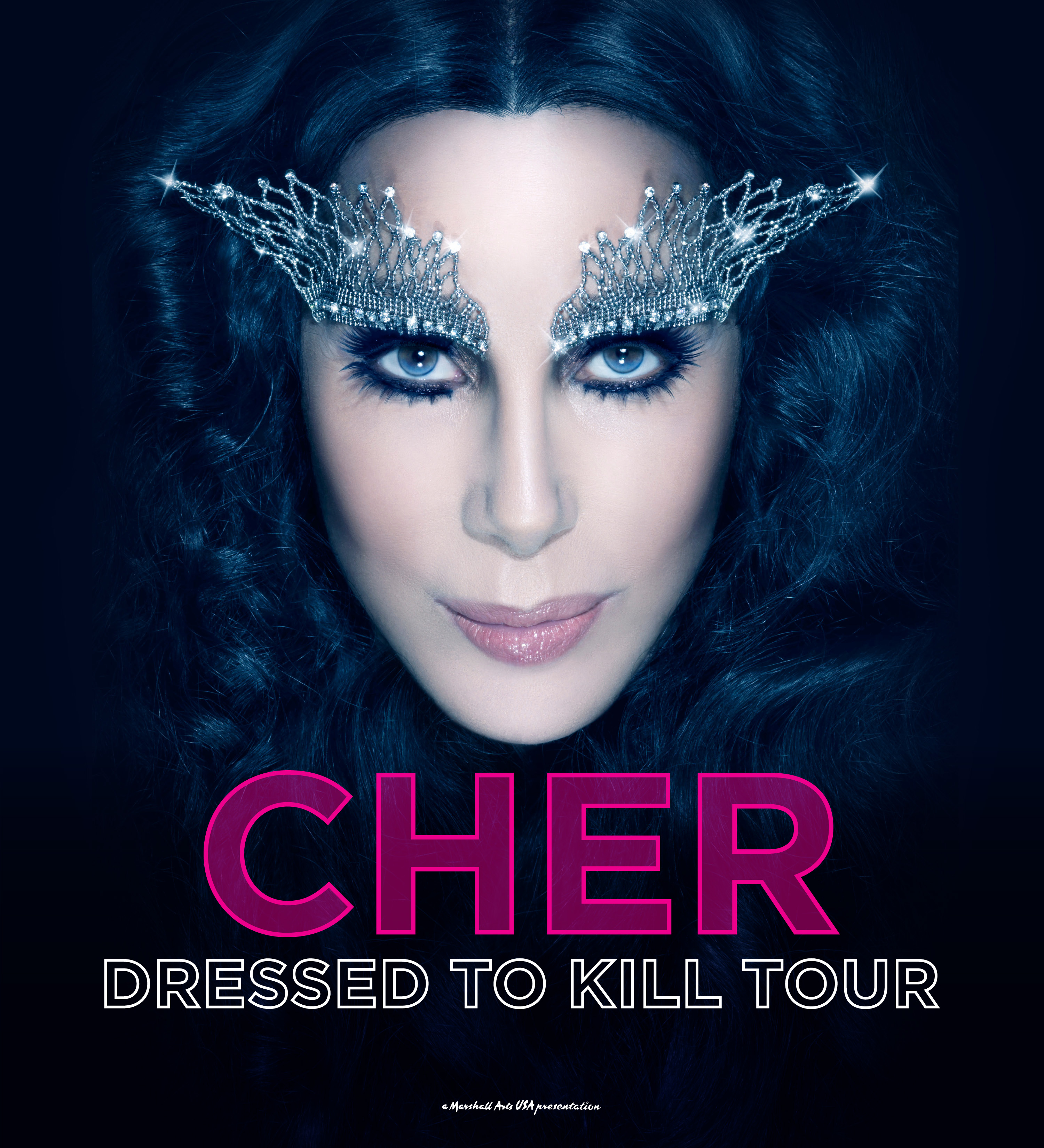 Cher Tour Poster B